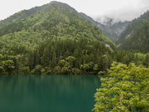 Jiuzhaigou Valley National park in China. Arrow Bamboo lake at Jiuzhaigou Valley National park in China stock photos