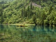 Jiuzhaigou Valley National park in China. Five Flower Lake at Jiuzhaigou Valley National park in China stock photos