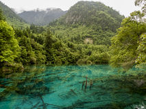 Jiuzhaigou Valley National park in China Royalty Free Stock Photography