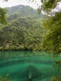 Jiuzhaigou Valley National park in China. Lake at Jiuzhaigou Valley National park in China stock images