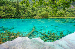 Jiuzhaigou Valley National Park and Historic Interest Area. Sichuan, China stock photo