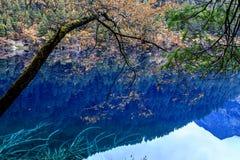 Jiuzhaigou Valley national park. Jiuzhaigou Valley Scenic and Historic Interest Area, Sichuan, China Stock Images