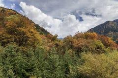Jiuzhaigou Valley national park. Jiuzhaigou Valley Scenic and Historic Interest Area, Sichuan, China Royalty Free Stock Images