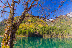 Jiuzhaigou Valley Scenic and Historic Interest Area Royalty Free Stock Image