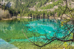 Jiuzhaigou Valley in Sichuan province, China Stock Images