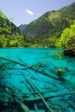 Jiuzhaigou wuhua池 免版税库存图片