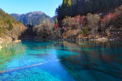 Jiuzhaigou wuhuahai winter Royalty Free Stock Images