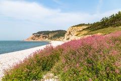 Jiuzhangya Scenery Spot beach in Changdao Island, Yantai Royalty Free Stock Photo