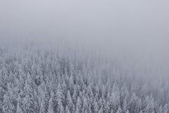 Jizera berg i Tjeckien royaltyfri fotografi