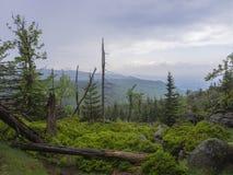 Jizera Mountains jizerske hory panorama, view from hill Frydla. Ntske cimburi, Friedlander Zinne with lush green spruce forest, bare trees, boulders and blue sky Stock Photos