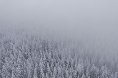 Jizera mountains in Czech Republic royalty free stock photography