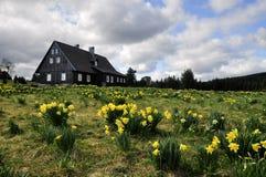 Jizerka rural settlement Royalty Free Stock Photography