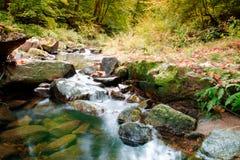 Jizerskeberg, Kamenice-rivier, Tsjechische Republiek stock afbeelding
