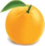 Jjuicy orange Royalty Free Stock Images