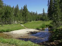 JMT Creek Crossing. The John Muir Trail at a meadow and creek crossing Royalty Free Stock Photos
