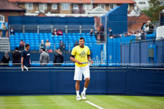 Jo wilfred tsonga Stock Photography