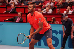 Jo-Wilfried Tsonga (FRA) Stock Photo