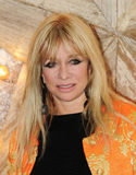Jo Wood Royalty Free Stock Photos
