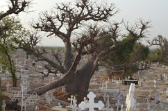 Muslim and Christian graveyard in Joal-Fadiouth, Petite Côte, Senegal. Joal-Fadiouth is a town in the Thiès Region at the southern end of the Petite Côte of Stock Photos