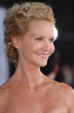 Joan Allen Royalty Free Stock Photography