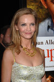 Joan Allen Royalty Free Stock Photos