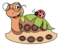 Joaninha em uma tartaruga bonito - ilustração Fotografia de Stock Royalty Free