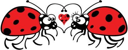 Joaninhas que caem maciamente no amor ilustração do vetor