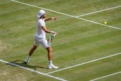 Joao Sousa at Wimbledon stock photos