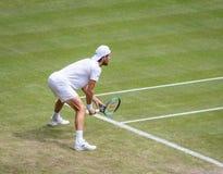 Joao Sousa at Wimbledon royalty free stock image