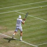 Joao Sousa at Wimbledon stock image