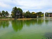 Joaquina瑞塔Bier湖III 免版税库存图片