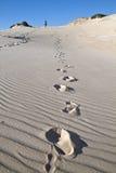 Joaquina - Dunes track Stock Images