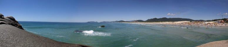 Joaquina plażowy panoramiczny widok Zdjęcie Stock