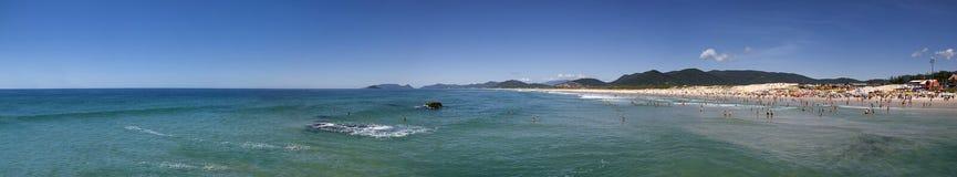 Joaquina strandpanoramautsikt, Florianopolis - Brasilien Fotografering för Bildbyråer