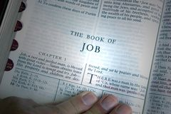 Job Chapter One. The bible is open to the book of Job. A hand is shown following the words. A beam of light highlights the reference Royalty Free Stock Image