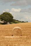 Job done. Harvest time at the end of the irish summer, cork county Royalty Free Stock Photos