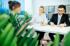 Job interview in progress Royalty Free Stock Images