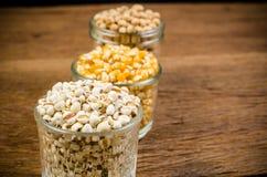 Job& x27; s泪花和干玉米种子在玻璃,农业产品 免版税图库摄影