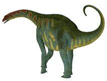 Jobaria dinosauriesvans Royaltyfria Bilder