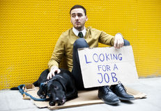 Jobless man. Young businessman holding sign Looking for a job Royalty Free Stock Images