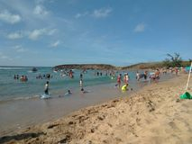 Jobos strand Isabela Puerto Rico arkivfoto