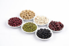 Jobs tears, Soy beans, Red beans, black beans, and green beans Stock Images