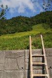 Jobstepp ein zum Bauernhof stockfotografie