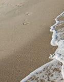Jobstepps hin zu dem Meer Lizenzfreies Stockfoto