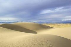 Jobstepps im Sand, der zum Horizont ausdehnt Gobi-Wüste, Mongolei Stockfotos