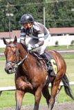 Jockey που οδηγά ένα άλογο σε έναν αγώνα στοκ φωτογραφίες