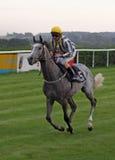 Jockey 02 Royalty-vrije Stock Fotografie