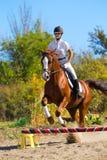 Jockey avec le cheval de race Photos stock
