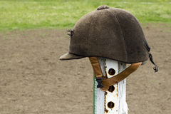 Jockey  brown helmet Stock Images