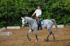Jockey chez le cheval de conduites en verre Photographie stock libre de droits